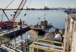 Buckeye Bronx Dolphin Upgrade